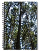 Dark Trees Spiral Notebook