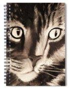 Darling Cat Spiral Notebook