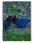 Darling I Have To Tell You A Secret-sweet Stellar Jay Couple Spiral Notebook