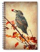 Darling Starling Spiral Notebook