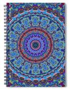 Darren's Mandala Spiral Notebook