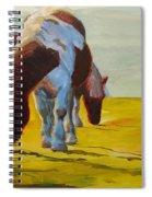 Dartmoor Ponies Spiral Notebook