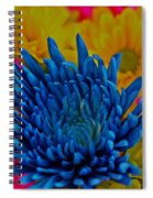 Dash Of Blue Spiral Notebook