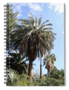 Date Tree At The Arboretum Spiral Notebook
