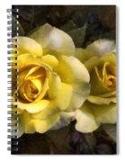 Daughters Of Midas Spiral Notebook
