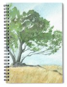 Daughton Park Haiku - Survivor Spiral Notebook