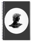David 38 Spiral Notebook