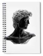 David 46 Spiral Notebook