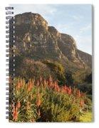 Dawn At Kirstenbosch Spiral Notebook