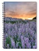 Dawn Of Lupine Spiral Notebook