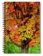 Day Glo Autumn Spiral Notebook