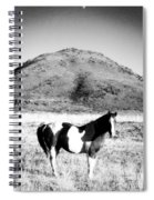 Day Moon And Paint Spiral Notebook
