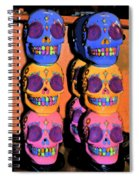 Day Of The Dead Ink Spiral Notebook