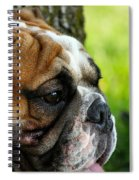Daydreamer Spiral Notebook