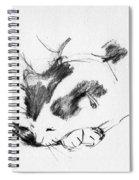 Daydreamer_3 Spiral Notebook