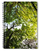 Daydreaming In The Hammock Spiral Notebook