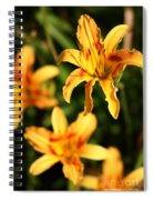 Daylillies0107 Spiral Notebook