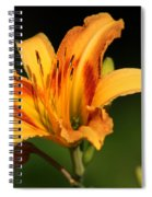 Daylillies0131 Spiral Notebook