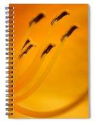 Daylily Closeup Spiral Notebook