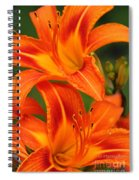 Daylily Duo  Spiral Notebook