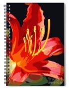 Daylily Flame Spiral Notebook