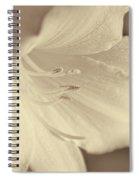 Daylily Flower Soft Brown Spiral Notebook