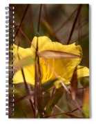 Daylily In Autumn Spiral Notebook