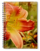 Daylily Memories Spiral Notebook