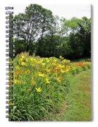 Daylily River Spiral Notebook