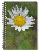 Days Eye Spiral Notebook