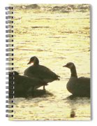 Days Love  Spiral Notebook