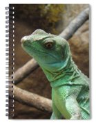 Dazed And Confused Spiral Notebook