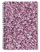 Dazzle Spiral Notebook