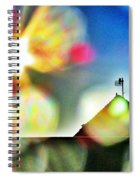 Dazzled By The Sun Spiral Notebook
