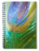 Dazzling Light Spiral Notebook