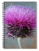 Dazzling Thistle Beauty Spiral Notebook