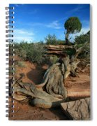 Dead Horse Point Tree 1 Spiral Notebook