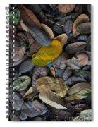 Dead Leaves Spiral Notebook