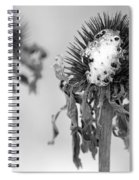 Dead Of Winter Spiral Notebook