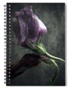 Dead Or Alive Spiral Notebook