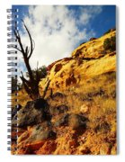 Dead Tree Against The Blue Sky Spiral Notebook