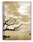 Dead Tree And Sea Spiral Notebook
