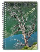 Dead Tree At Green River Lakes -wyoming Spiral Notebook