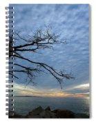 Dead Tree At Otter Cliffs Spiral Notebook