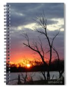 Dead Tree At Sunset Spiral Notebook