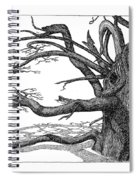 Dead Tree Spiral Notebook
