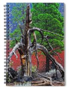 Dead Tree On Cinder At Sunset Crater Spiral Notebook