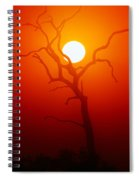 Dead Tree Silhouette And Glowing Sun Spiral Notebook
