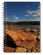 Dead Trees And Rocks Spiral Notebook
