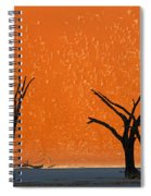Dead Trees By Red Sand Dunes, Dead Spiral Notebook